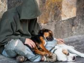 Viele Obdachlose leiden an psychischen Störungen