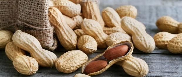 Erdnussallergie - Therapie durch Erdnüsse