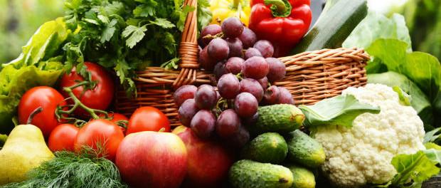 Ernährung und Stoffwechsel